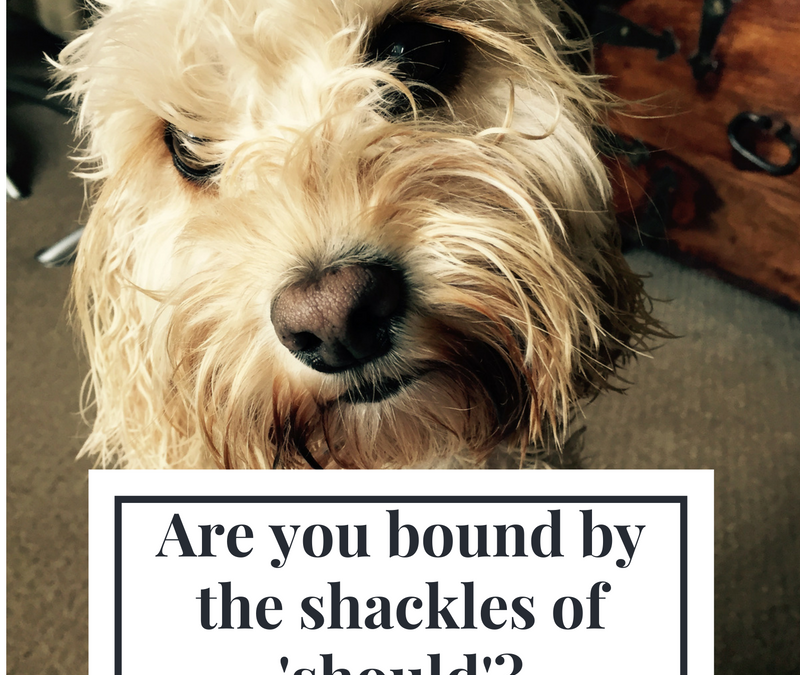 The Shackles Of 'Should'