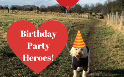 My Mum's Birthday Party Heroes